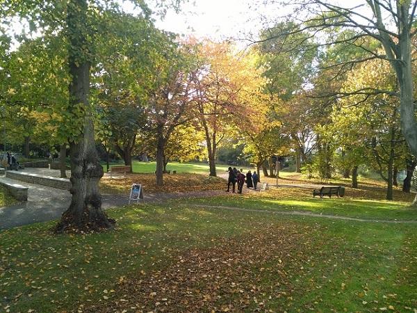 大学内の公園